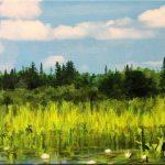 Moose Creek Shoreline